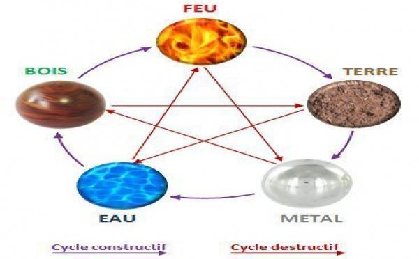 Le cycle des 5 éléments